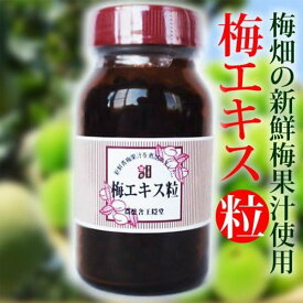梅エキス 粒タイプ 90g 梅農家の安心梅 粒状 梅肉(送料無料)