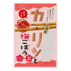 壮関 カリッと梅ごぼう 22g×120袋 (送料無料) 直送
