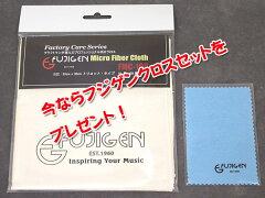 FUJIGENFGNAcousticAG2-NTF【スペア弦&レビュー特典付き!】今ならフジゲンクロスセット付き!【送料無料】