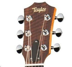 TaylorAcademy12【送料無料】【TaylorULTEXピックをプレゼント!】