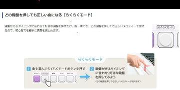 CASIOLK-223キーボード【送料無料】【代引き不可】台数限定特価!