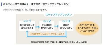 CASIOLK-228キーボード【送料無料】【代引き不可】台数限定特価!