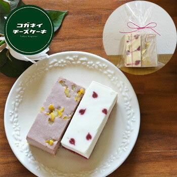 ミニショコラチーズケーキギフト低糖質