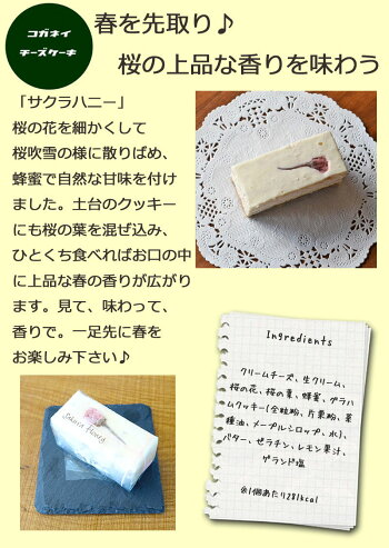 【あす楽】サクラハニーのレアチーズケーキ[6個入り]