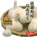 青森県産 にんにく L1P10入 |青森 国産 福地ホワイト 6片 効果 効能 送料発生