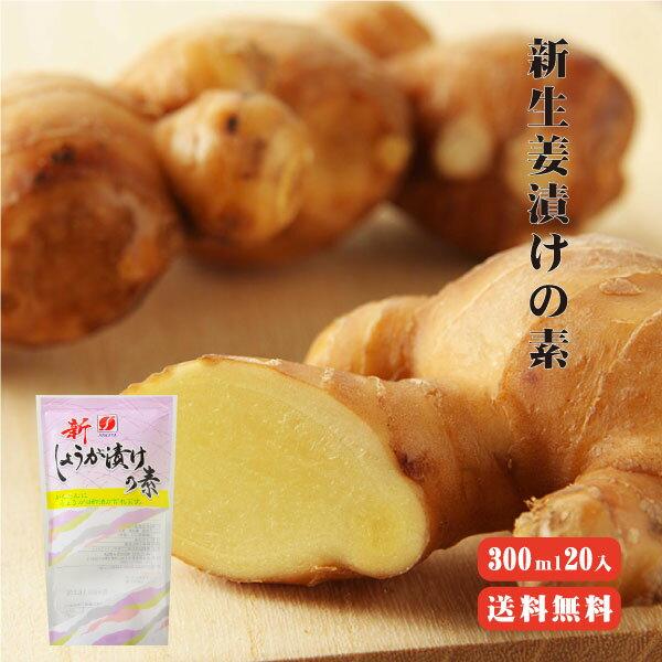 【送料無料】新生姜漬けの素 300ml 20入 |新しょうが 新生姜 甘酢 調味液 野菜 漬物