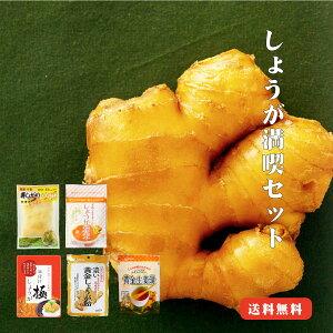 【ゆうパケット送料無料】しょうが満喫セット |生姜 国産パウダー 寿しがり 甘酢 ふりかけ 万能調味料 お取り寄せ おためしセット