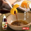 高知県産黄金しょうが・高知県産ゆず果汁使用 しょうがぽん酢 360ml×3 |ポン酢 国産 柚子 水炊き