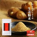 【ゆうパケット送料無料】高知県産黄金しょうが100% しょうが粉末 50g |生姜 高知県産 国産 しょうがパウダー 乾…