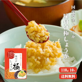 【ゆうパケット送料無料】味付け極しょうが 110g×10 |ふりかけ ご飯のお供 酢しょうが おかず生姜 万能調味料
