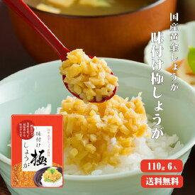 【ゆうパケット送料無料】味付け極しょうが 110g×6 |ふりかけ ご飯のお供 酢しょうが おかず生姜 万能調味料