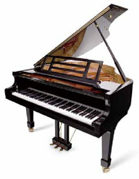 【新品グランドピアノ】フォイリッヒ Mod.161-Professional2