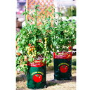 デルモンテ キッチンガーデン トマト用培養土 トマトの土 15L 【最大3袋まで基本送料648円でお届けします。※一部地域…
