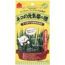 ペティオ ネコの元気草の種 15g×5包入