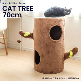 キャットツリー ウッディ KTS12−0928 キャットタワー 据え置き スリム おしゃれ 小型猫 大型猫 シニア コーナン