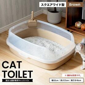 ≪あす楽対応≫キャットトイレ スクエアワイドBR 猫 トイレ 本体 ネコトイレ 猫用トイレ キャットトイレ しつけ 猫砂 コーナン