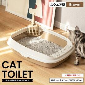 キャットトイレ スクエアBR 猫 トイレ 本体 ネコトイレ 猫用トイレ キャットトイレ しつけ 猫砂 コーナン
