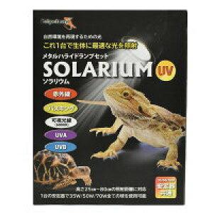 自然環境を再現するための光 ゼンスイ SOLARIUM ソラリウム メタルハライドランプ(メタルハライドランプ 50W+共通安定器+専用ソケット)【送料無料 但、一部地域送料別途】【♭】