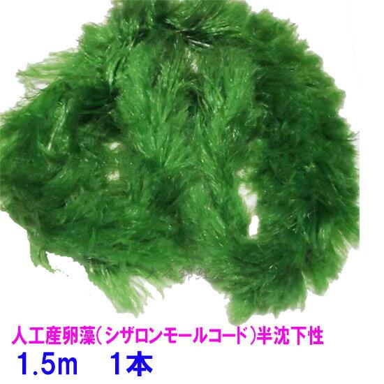 人工産卵藻(シザロンモールコード)半沈下性 1.5m【♭】
