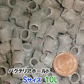 ☆ゼンスイ バクテリアホールド Sサイズ(12Φ) 10L【♭】