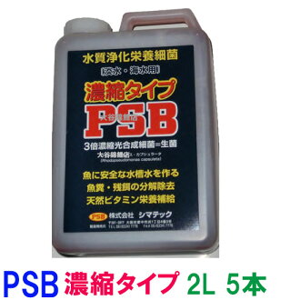 ♭ † □ Symantec PSB 3 x concentrated type 20 l on