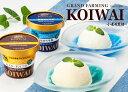 《送料無料》小岩井農場特製アイスクリーム6個セット [バニラ&牛乳]【スイーツ ギフト】