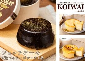 【数量限定・特別価格】小岩井農場 ショコラケーキと選べるチーズケーキセット【スイーツ ギフトボックス】