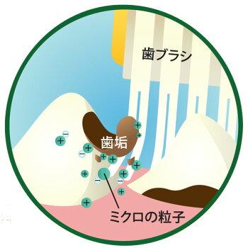 シグワンゼオライトハミガキ21g【歯磨き/デンタルケア/犬用品/猫用品/ペット・ペットグッズ/ペット用品】