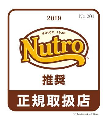 ニュートロナチュラルチョイスキャットフード穀物フリーアダルトサーモン2kg【5250円以上送料無料】