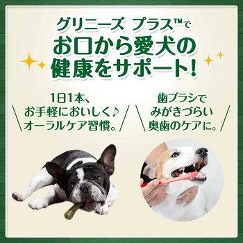 【今だけ6本入り1袋プレゼント!】グリニーズカロリーケア超小型犬用体重2-7kg60本いり日本正規品グリニーズプラスデンタルガム歯磨き