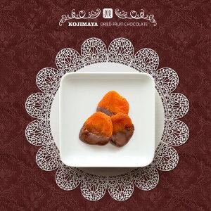 ドライアプリコットチョコレート 《70g》 ベルギー産最高級チョコレート使用♪ ドライフルーツ屋が本気で美味しいドライフルーツチョコレートを開発しました。 あんず 干し杏 ドライあ