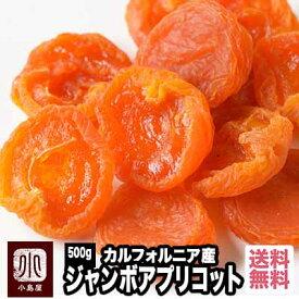 【宅急便送料無料】カルフォルニア産 ジャンボあんず(アプリコット) 《500g》最高峰の杏 甘さも香りも上品さも段違い。杏の品揃えは日本一を誇る専門店です。砂糖不使用 ドライアプリコット ドライあんず あんず ウイ好き