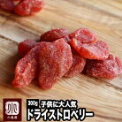 いちごの郷の苺使用 ドライいちご 《300g》苺の甘くておいしい香りがたまりません。 子供に…