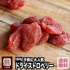 いちごの郷の苺使用 ドライいちご 《1kg》苺の甘くておいしい香りがたまりません。 子供に大…