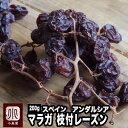 最高峰の味 スペイン・アンダルシア産:マラガ枝付きレーズン 《200g》ワイン好きの方は知る人ぞ知る葡萄です。コク…