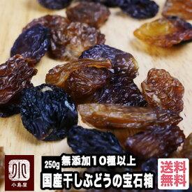 【宅急便送料無料】 完全無添加 10種類以上の葡萄を楽しめる 国産干しぶどうの宝石箱《250g》