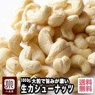 無添加 ナッツ専門店の生カシューナッツ(インド産) 《1kg》大粒でナッツの旨みが濃いです。…