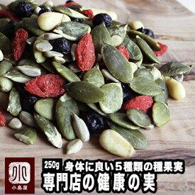 健康の実 《250g》ナッツとドライフルーツの専門店が贈る健康ミックスナッツ身体に良いナッツとドライフルーツたっぷり♪ブルーベリー クコの実 松の実 力の実 長寿種