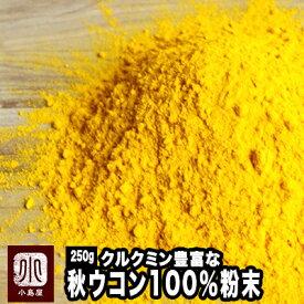 無添加 秋ウコン粉末(粉末状) 《250g》本場インド産のクルクミン豊富な極上秋うこんを使用