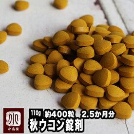 ★極上の秋ウコン(錠剤) 《110g》 2.5か月分!!(約400粒)本場インド産の極上うこんを使用飲みやすい錠剤タイプです。ウコン粒