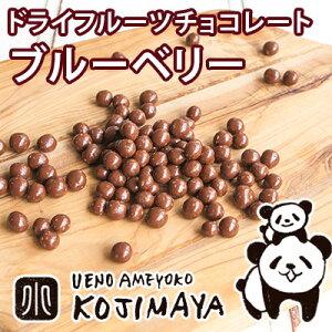 ワイルドブルーベリーチョコレート 《130g》 専門店のドライフルーツの味がしっかりするチョコレートをお試し下さい♪丸のままのドライフルーツをしっかりと使っています♪ ドライブル