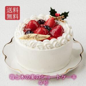 【苺と木の実のショートケーキ 4号(直径12cm)】クリスマスケーキ 送料無料 新宿Kojimaya x'mas プレゼント 早期 予約 イチゴ いちご