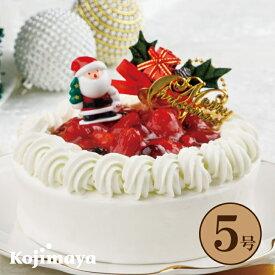 【クリスマス 苺と木の実のショートケーキ 5号 (直径15cm)】 いちごのショートケーキ 送料無料 予約 贈り物 プレゼント クリスマス 2020 christmas x'mas クリスマスケーキ 小島屋乳業製菓 新宿kojimaya
