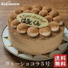 チョコレートケーキ【ガトーショコラ 5号(4〜6名)】送料無料 誕生日ケーキ バースデーケーキ