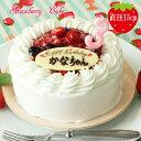 苺のショートケーキ 5号【苺と木の実のショートケーキ5号】送料無料