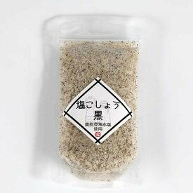 能登製塩 奥能登海水塩使用 塩こしょう 100g