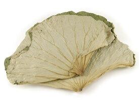 蓮の葉(徳用1kg) | 古樹軒 はすのは 荷叶 乾燥 かんそう 業務用 食材 手作り 中華ちまき 粽 八宝粽子 おこわ 使い方 レシピ 包み方 中華料理 販売 通販 おすすめ グルメ