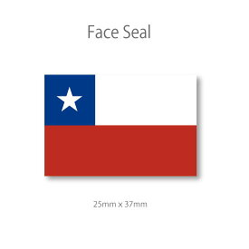 チリ 国旗