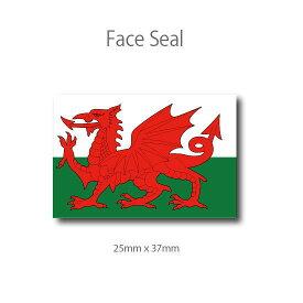 ウェールズの旗 フェイスペイントシール <医療テープタイプ>