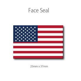 アメリカ国旗・星条旗 フェイスペイントシール <医療テープタイプ>